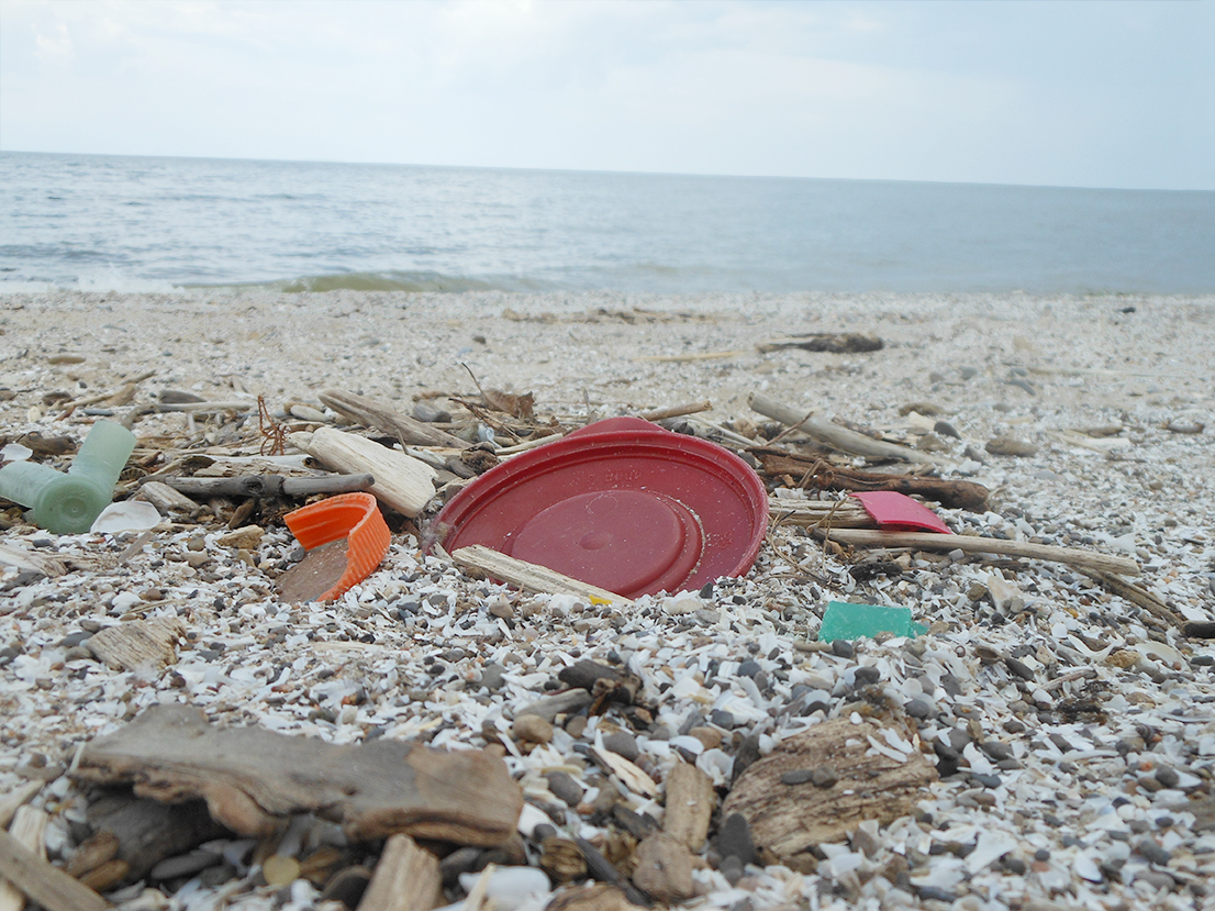 Marine debris on a beach